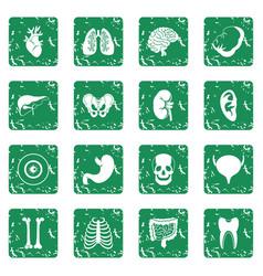 Human organs icons set grunge vector