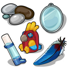 parrot and accessories therefor isolated vector image vector image