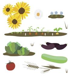 Rural plants set vector
