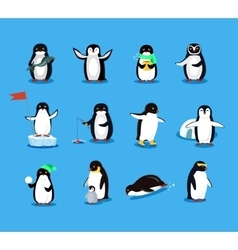 Set of animal pinguin design flat vector