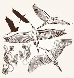 Set of hand drawn birds and swirls vector