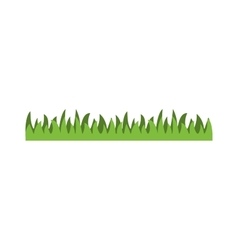 Grass with isolated vector image