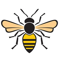 Bee icon vector image vector image