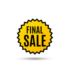 Final sale special offer price sign vector
