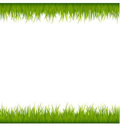 Green grass frame vector