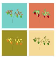 Assembly flat plant capsicum pepper vector