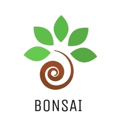 Bonsai tree logo icon vector image