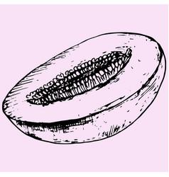 Half melon vector