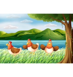 The three chickens at the riverbank vector image
