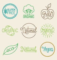 Labels in trendy mono line style vector