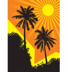 Sunlit palm trees vector
