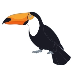 Cartoon Smiling Toucan vector image