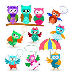 funny cartoon owls set in different poses vector image