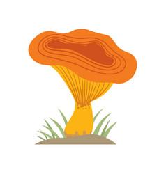 poisonous orange mushroom nature food vegetarian vector image vector image