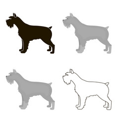 Schnauzer icon in cartoon style for web vector