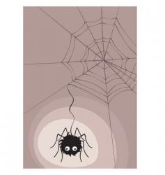Spider in cobweb vector