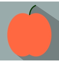 Peach flat icon vector