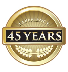 Forty Five Years Experience Gold vector image vector image