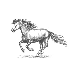 White strong horse galloping on sport races vector