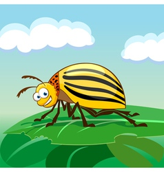 Cartoon colorado potato beetle vector image