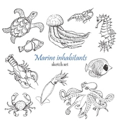 Collection of sea inhabitants in sketch vector