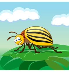 Cartoon colorado potato beetle vector