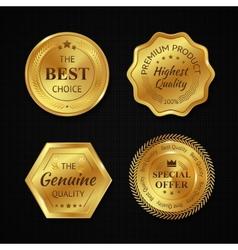 Golden metal badges vector