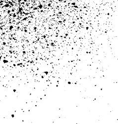 Black ink paint splatter on white background spray vector