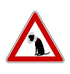 Pet hospital warning sign vector image vector image