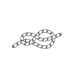 figure eight rope knot isolated icon vector image