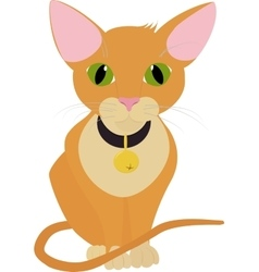 Funny orange cat with big green eyes isolated on vector image