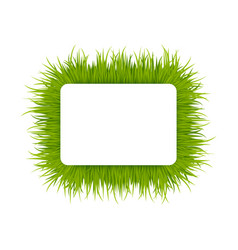Green grass square frame vector