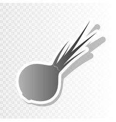 onion sign salad ingredient healthy vegetable vector image