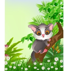 Squirrels on tree with tropical forest background vector