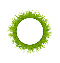 Green grass round frame vector