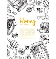 Honey bee hand drawn honey vector