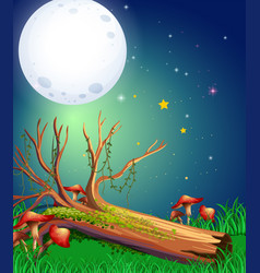 Scene with fullmoon over the garden vector