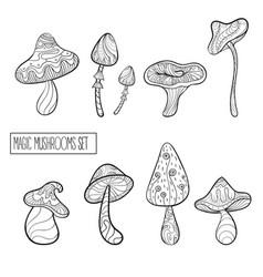 set of stylized magic mushrooms vector image