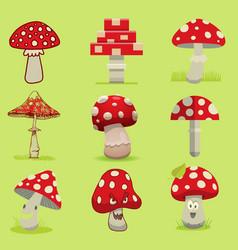 Amanita poisonous mushroom isolated vector