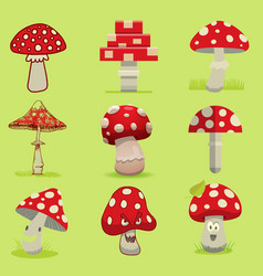 amanita poisonous mushroom isolated vector image