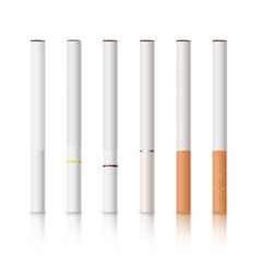 cigarettes set with white and yellow filters vector image