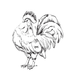 Lunar new year greeting card design cock sketch vector