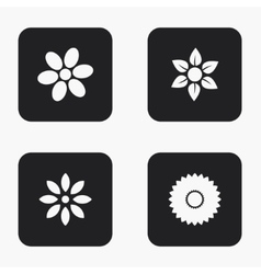 Modern flower icons set vector