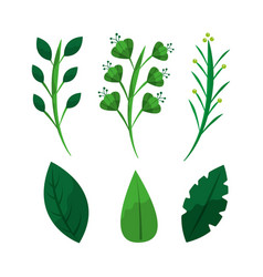 Set of green weed leaves branch botanical vector