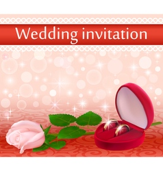 wedding background with a white rose vector image