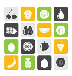 Silhouette Different kind of fruit and icons vector image vector image