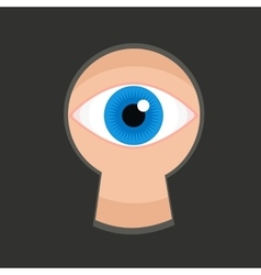 Eye in keyhole color flat vector