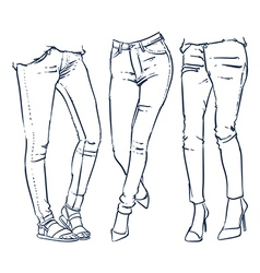 Fashionable skinny denim jeans outline vector