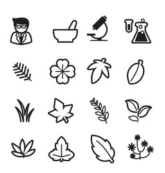 Herb icons set vector