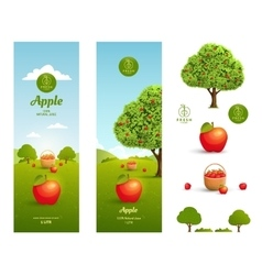 Apple juice packaging vector image